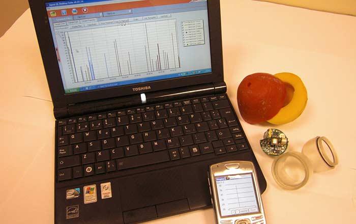 patata-cebolla-electronica_header_opt
